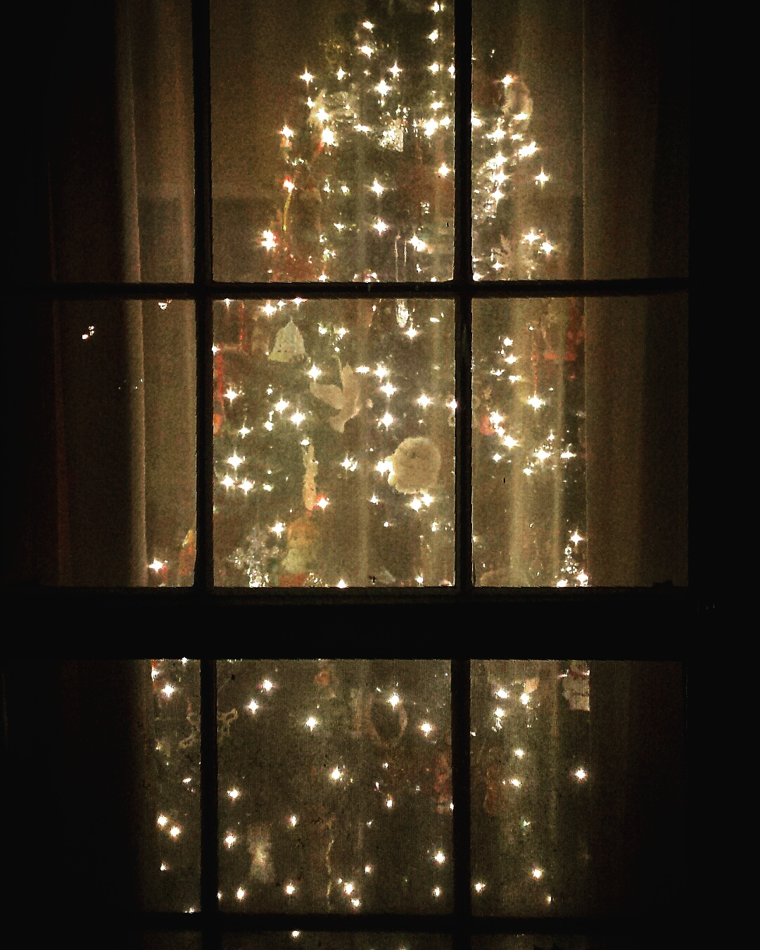 ChristmasTreeWindow