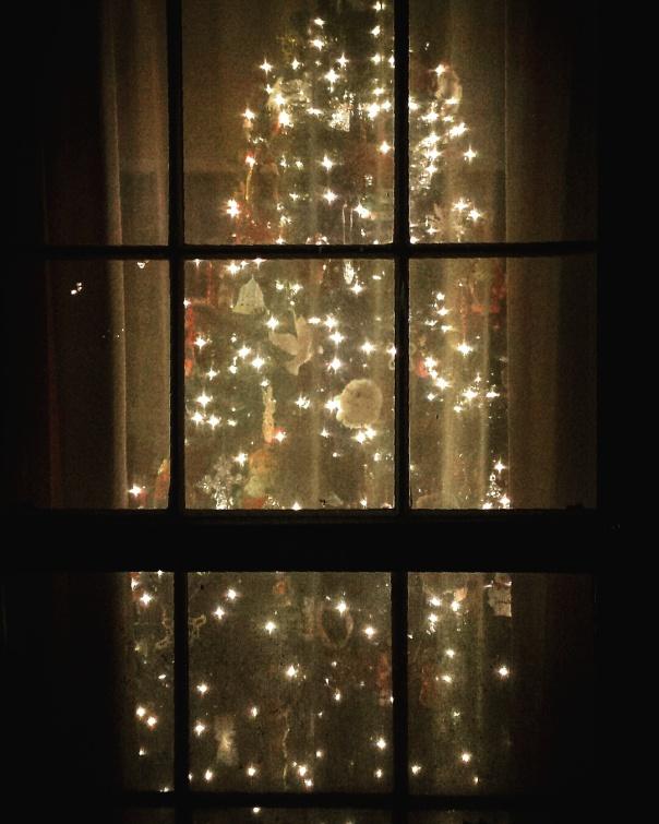 christmastreewindow