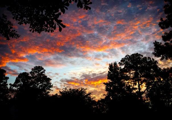 SunsetSwing